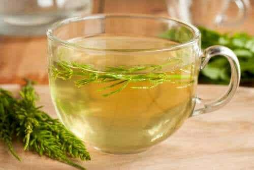 How to Drink Horsetail to Lose Weight