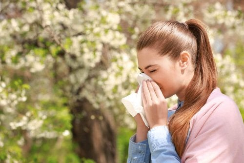 Three Medicinal Remedies for Allergies