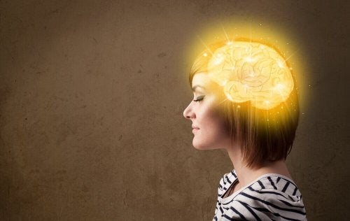 The Best Tips for Having a Young, Vital Brain