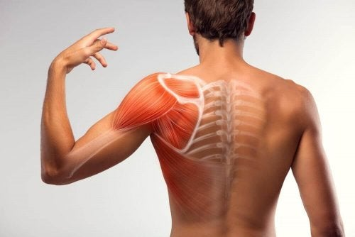 7 Home Solutions to Reduce Muscle Spasms