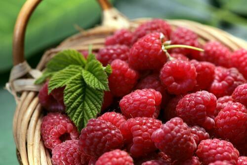 A cup of raspberries.
