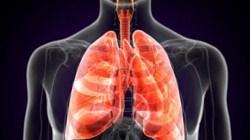 What Is Pulmonary Plague?