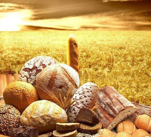 How do Grains Benefit Your Body?