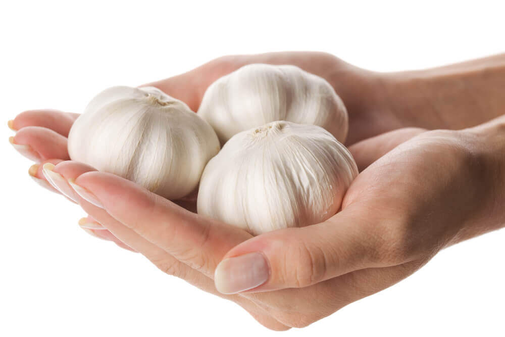 A person holding heads of garlic.