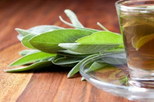 sage leaves drink