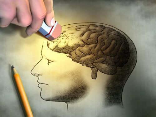 A person detailing a head's brain.