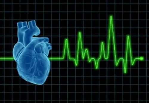 A picture of a heart and its activity.