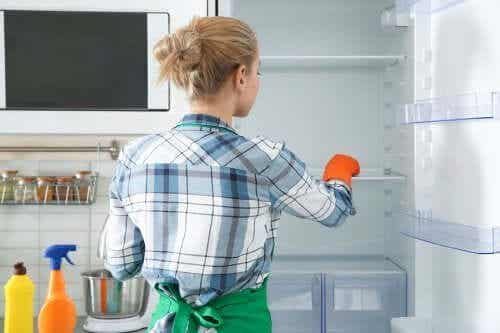 Eco Friendly Methods to Clean and Disinfect the Fridge