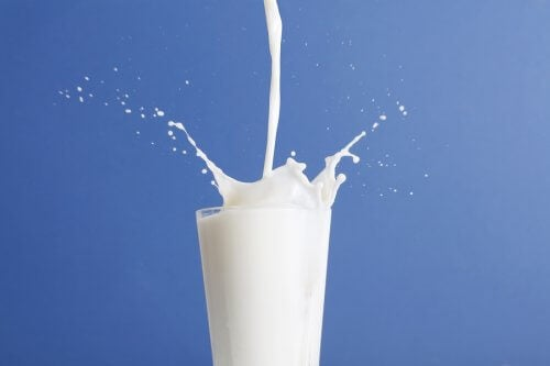 Whole Milk vs Low-Fat Milk: Which One is Better?