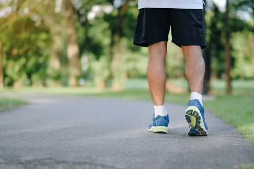 Eight Reasons Why Taking Walks is Beneficial