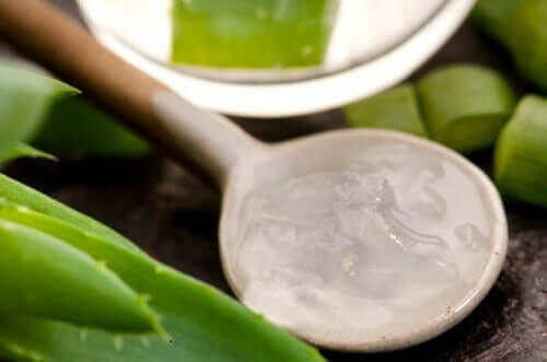 If you want to reverse hair loss, aloe vera is a great remedy.