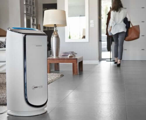 An Air Purifier Can Help Combat Pollen and Allergies