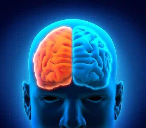 Hemispherectomy and the Postoperative Period