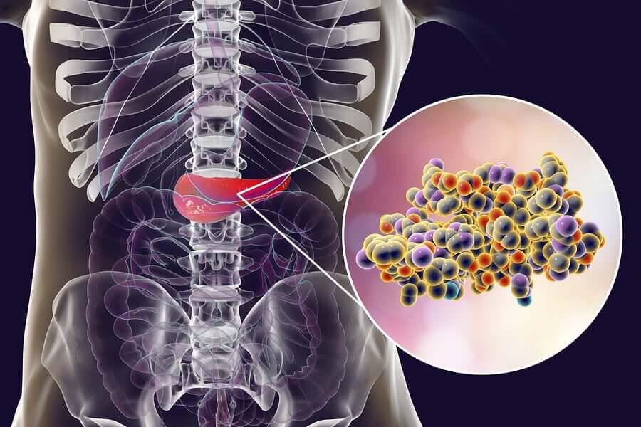 Zero-calorie artificial sweeteners increase insulin.