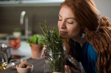 Rosemary for Healthy Hair: Three Remedies