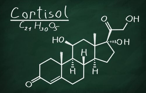 The chemical formula for cortisol.