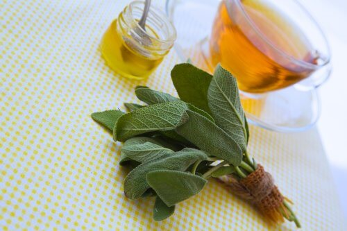Sage and Honey to Treat Cuts and Scrapes