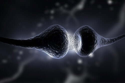 An illustration of Synapse releasing serotonin.