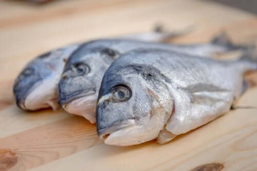 Mercury in Fish: Should You be Concerned?