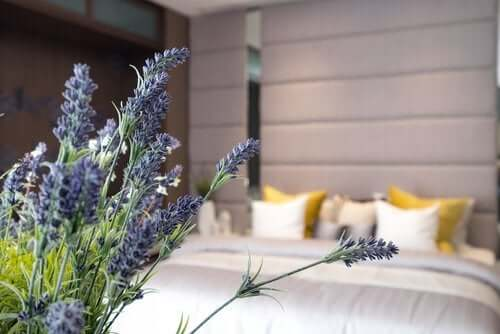 10 Keys to Good Sleep Hygiene