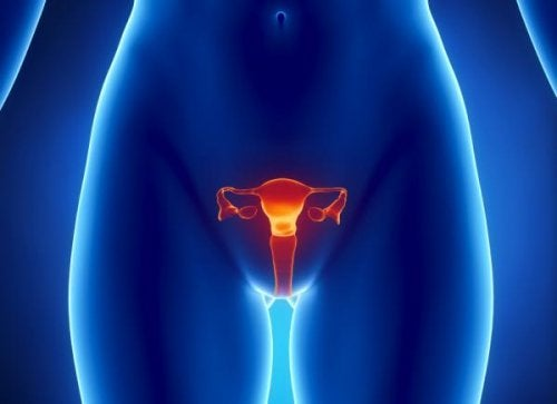 Artistic rendering of an x-ray image of primary ovarian insufficiency.