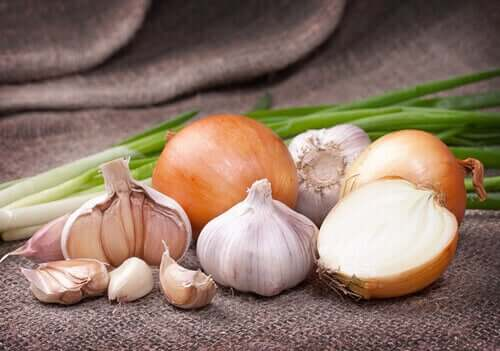 An array of white vegetables.