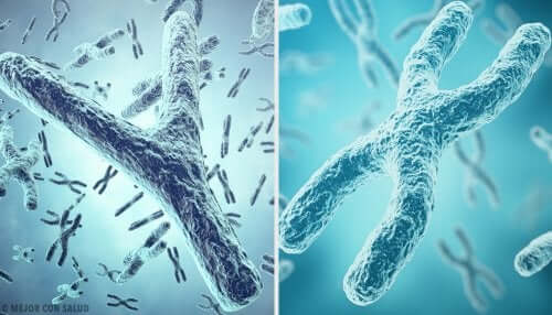 Sex chromosomes are also telomeres.