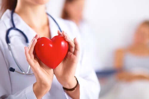 A doctor holding a plastic heart.