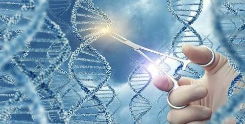 Some genomes.