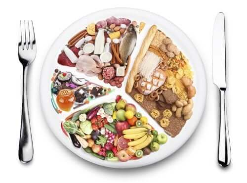 A plate representing a varied diet to avoid digestive problems