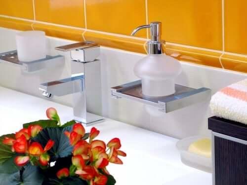 Begonias in a bathroom.