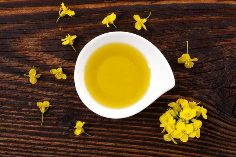 Everything You Need to Know about Canola Oil