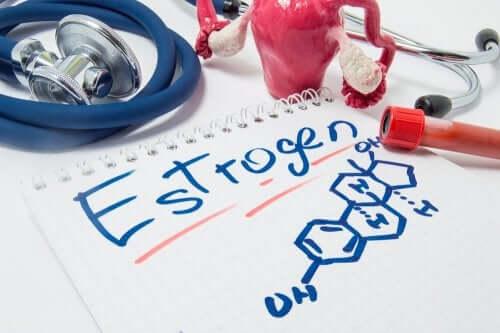 Estrogen.