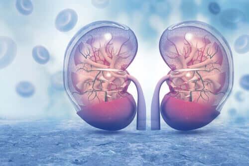 Kidney problems in coronavirus patients.