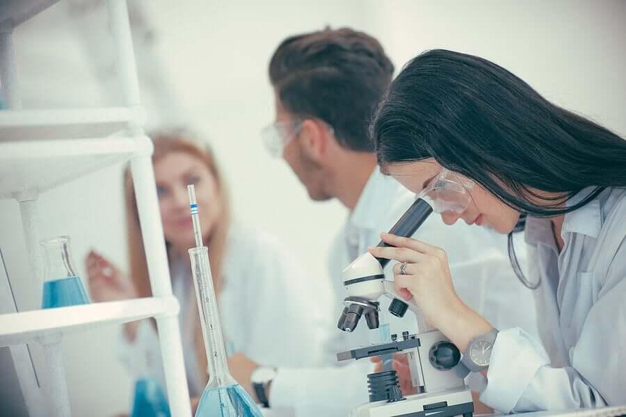 In a laboratory.