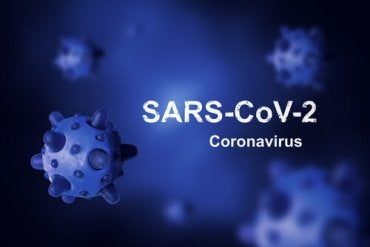 What's the Origin of Coronavirus and Why Haven't We Been Able to Eradicate It?