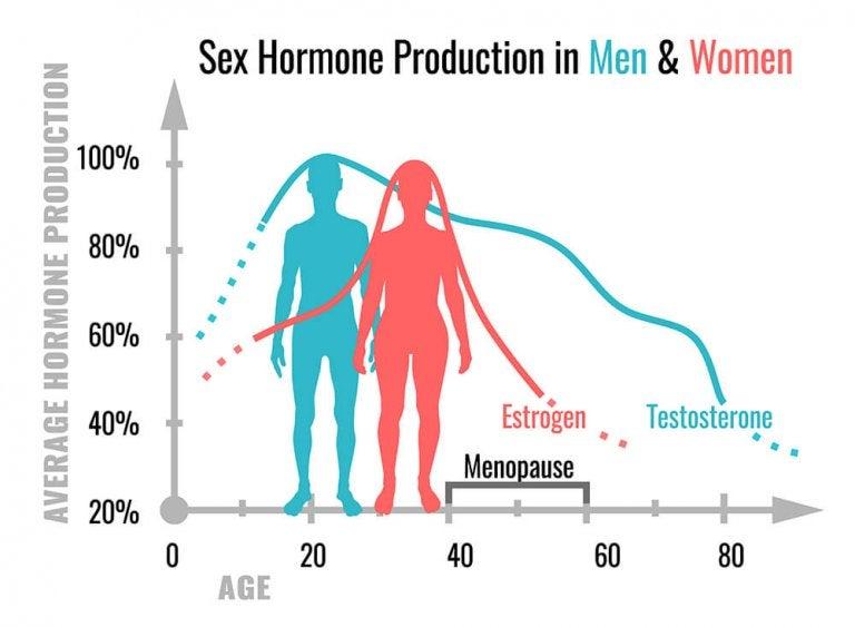 What Do Sex Hormones Do?