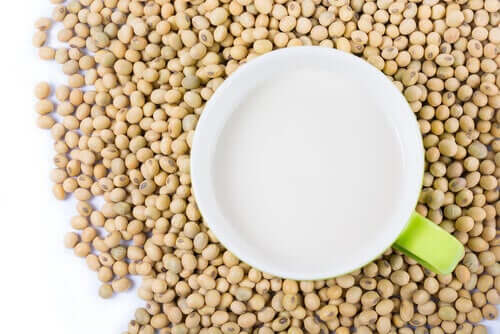 benefits of soy protein