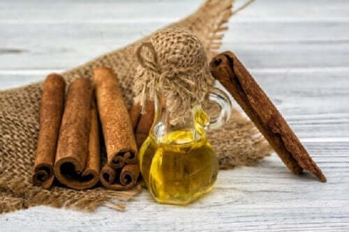 Cinnamon oil homemade mosquito repellents