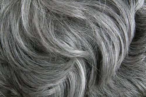 Stress Causes Gray Hair According to a Study