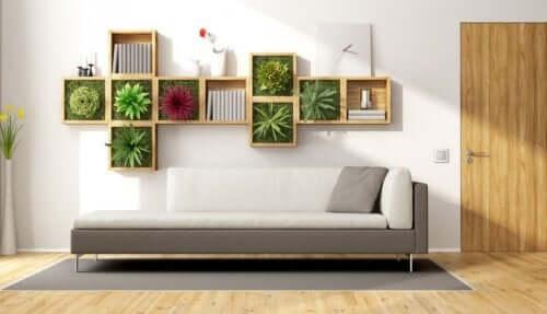 Indoor plants on shelf on wall.