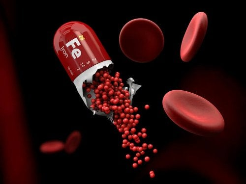 Iron supplement capsule opening in blood stream.