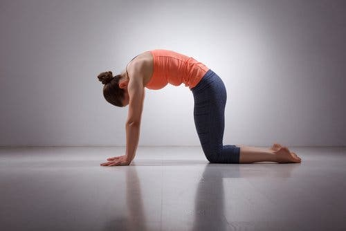 Woman doing yoga cat stretch prevent lower back pain