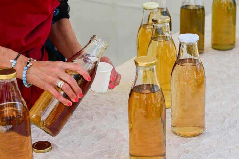 Characteristics and Risks of Kombucha Tea