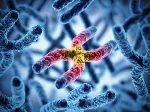 Chromosomes, which can cause hereditary deficient color vision.