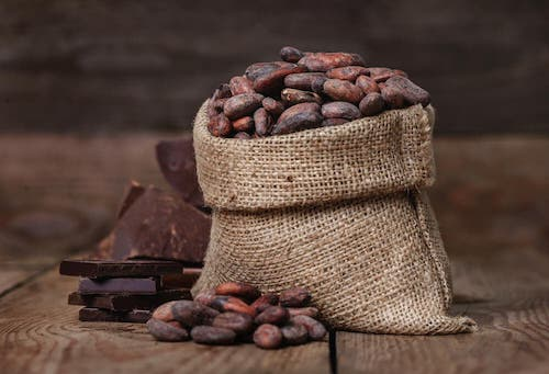 Cocoa beans.