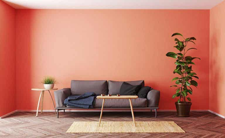 5 Color Trends for Your Home Decoration