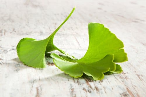 Ginkgo biloba helps treat sciatica.