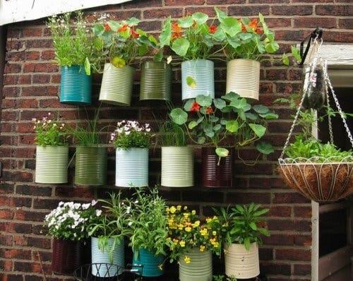 A hanging garden.