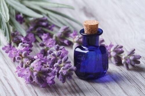 Bottle of lavender oil, can be used to control anxiety.
